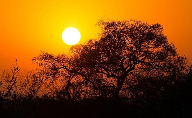 SUDAFRICA | 26 Febbraio – 07 Marzo